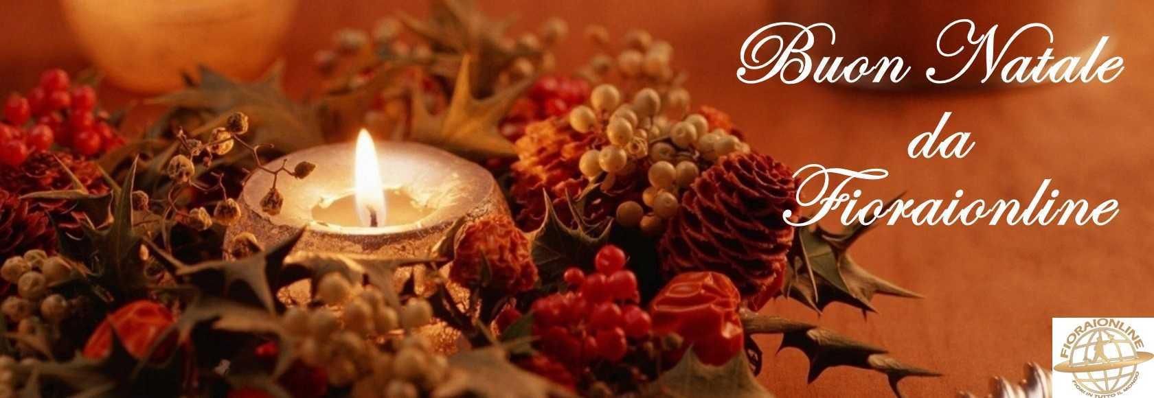 Fioraionline - Inviare online fiori per Natale