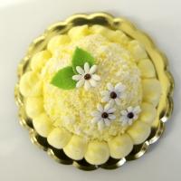 Inviare online Torta Mimosa