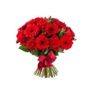Inviare online gerbere e rose rosse