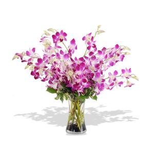 Inviare online Mazzo Dendrobium