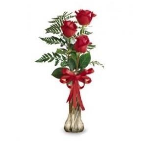 Inviare online tris di rose rosse
